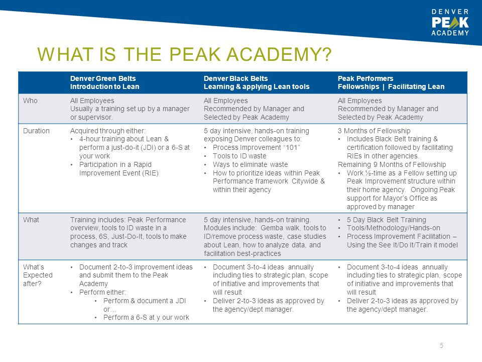 What is the Peak Academy