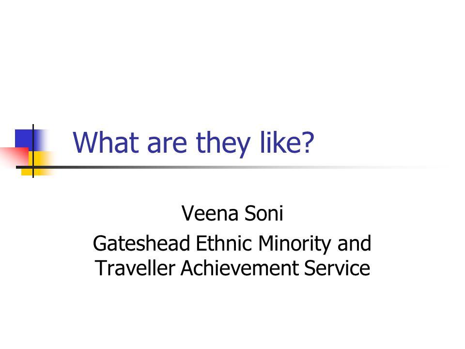 Veena Soni Gateshead Ethnic Minority and Traveller Achievement Service