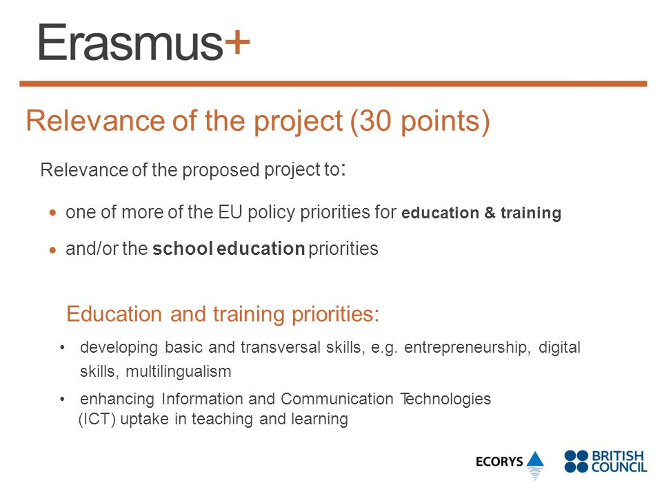Relevance of the project (30 points)