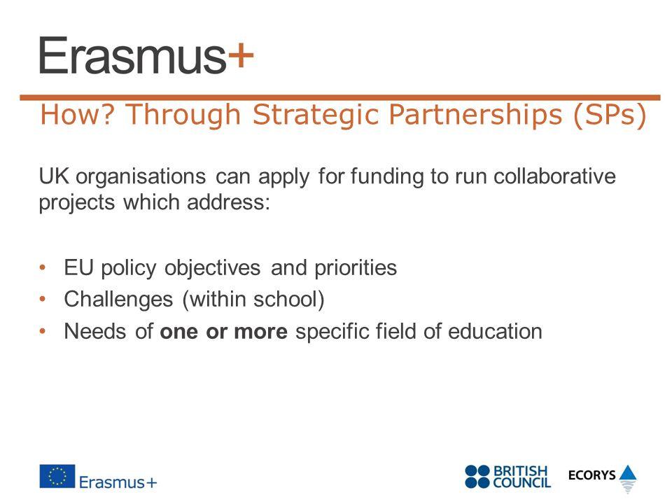 How Through Strategic Partnerships (SPs)