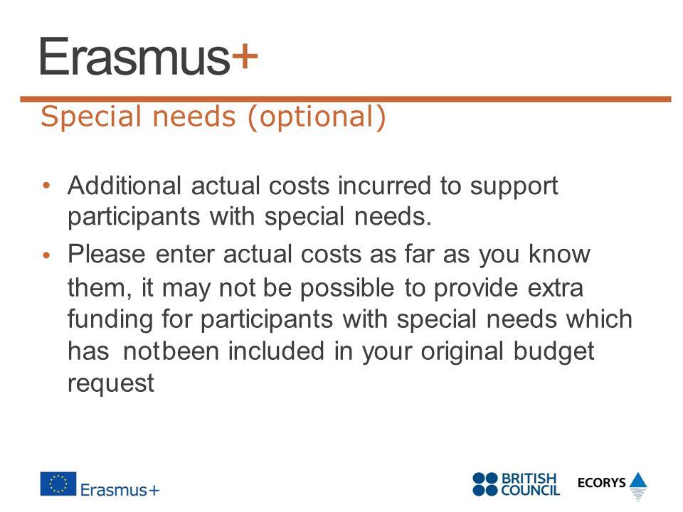 Special needs (optional)