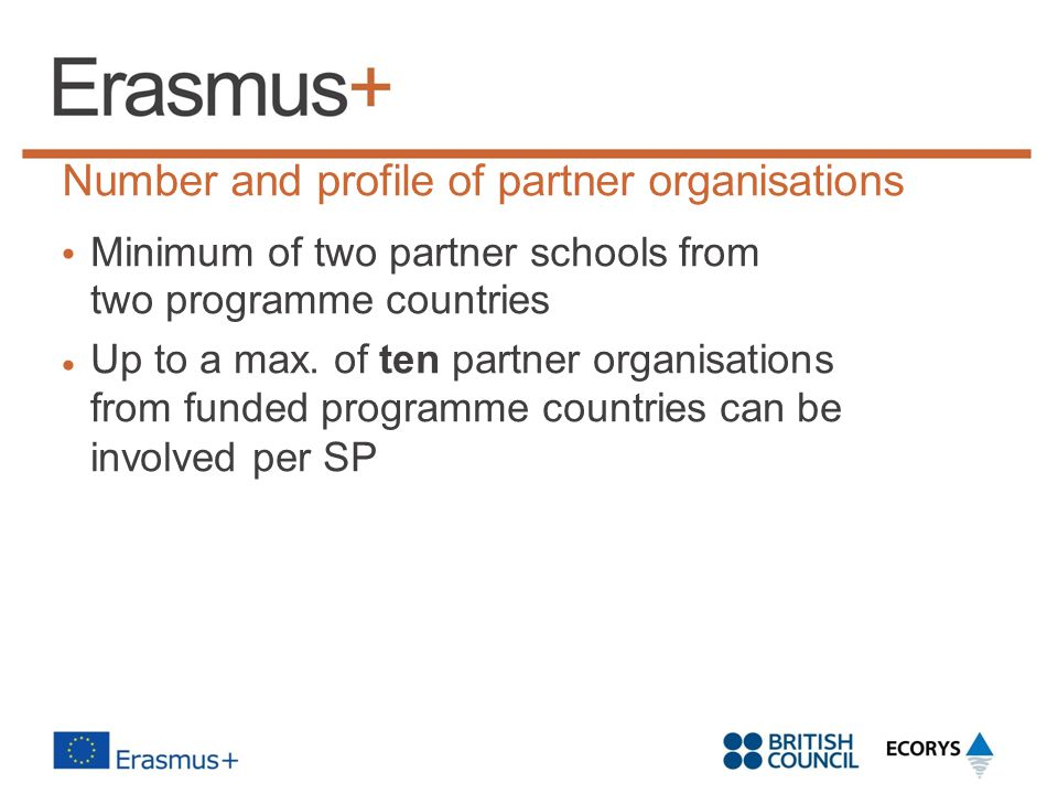 Number and profile of partner organisations
