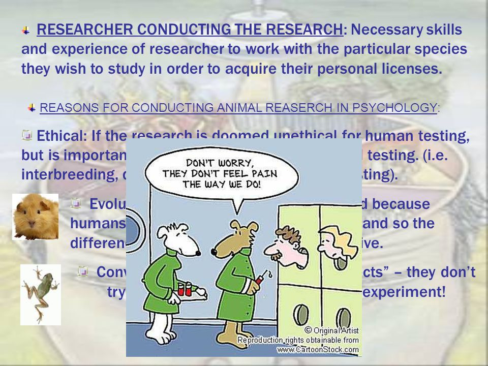 RESEARCHER CONDUCTING THE RESEARCH: Necessary skills and experience of researcher to work with the particular species they wish to study in order to acquire their personal licenses.