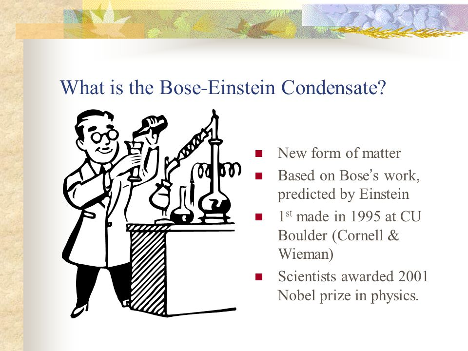 What is the Bose-Einstein Condensate