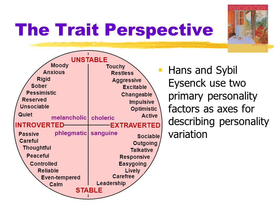 The Trait Perspective UNSTABLE. STABLE. choleric. melancholic. phlegmatic. sanguine. INTROVERTED.