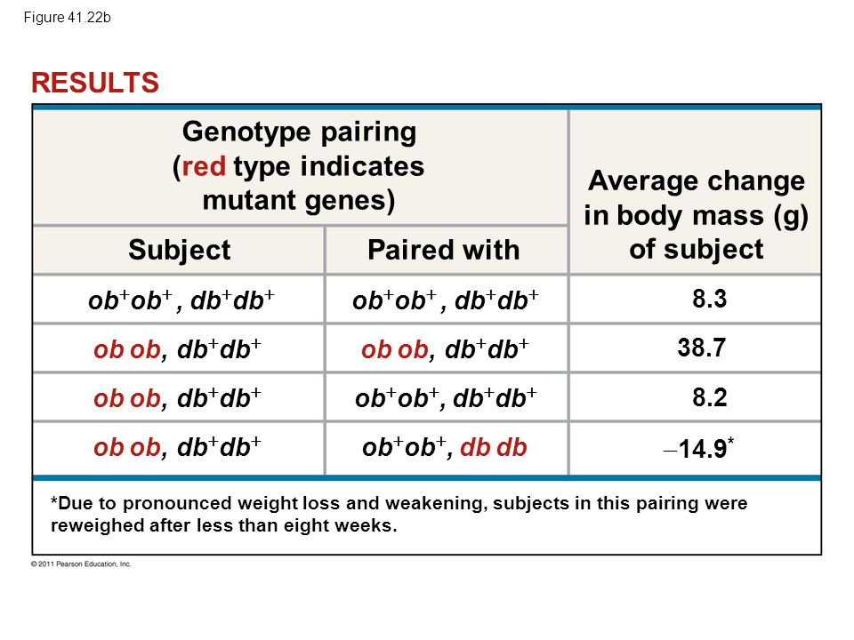 RESULTS Genotype pairing (red type indicates mutant genes)