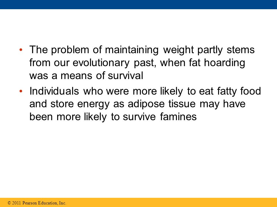 The problem of maintaining weight partly stems from our evolutionary past, when fat hoarding was a means of survival