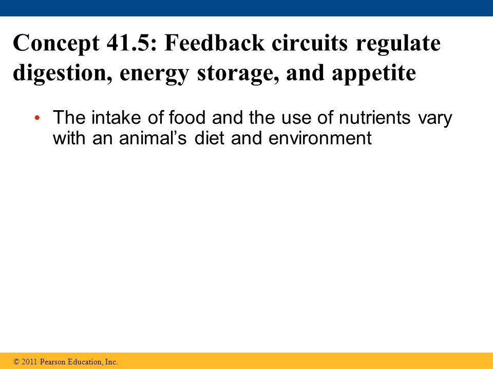 Concept 41.5: Feedback circuits regulate digestion, energy storage, and appetite