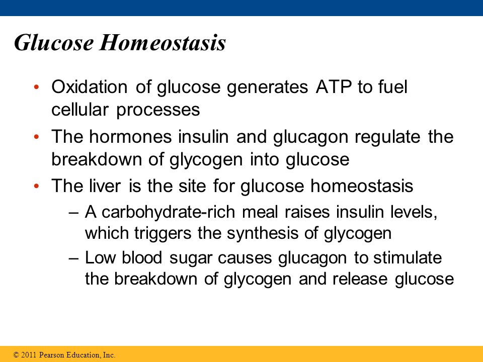Glucose Homeostasis Oxidation of glucose generates ATP to fuel cellular processes.