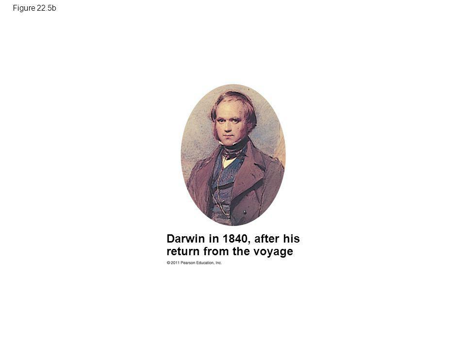 Darwin in 1840, after his return from the voyage