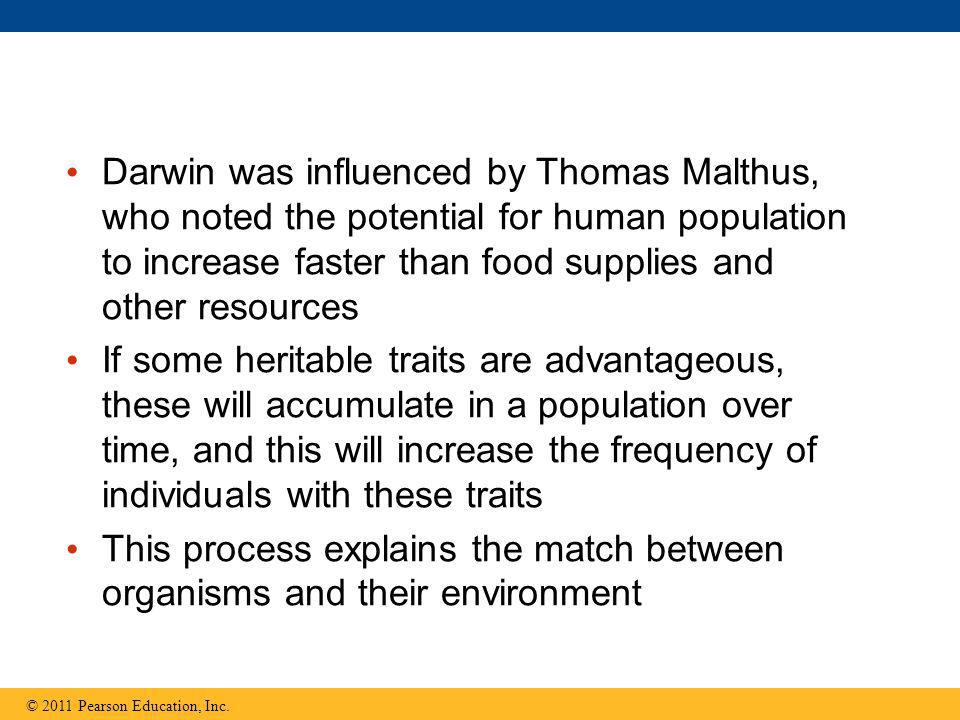 Darwin was influenced by Thomas Malthus, who noted the potential for human population to increase faster than food supplies and other resources