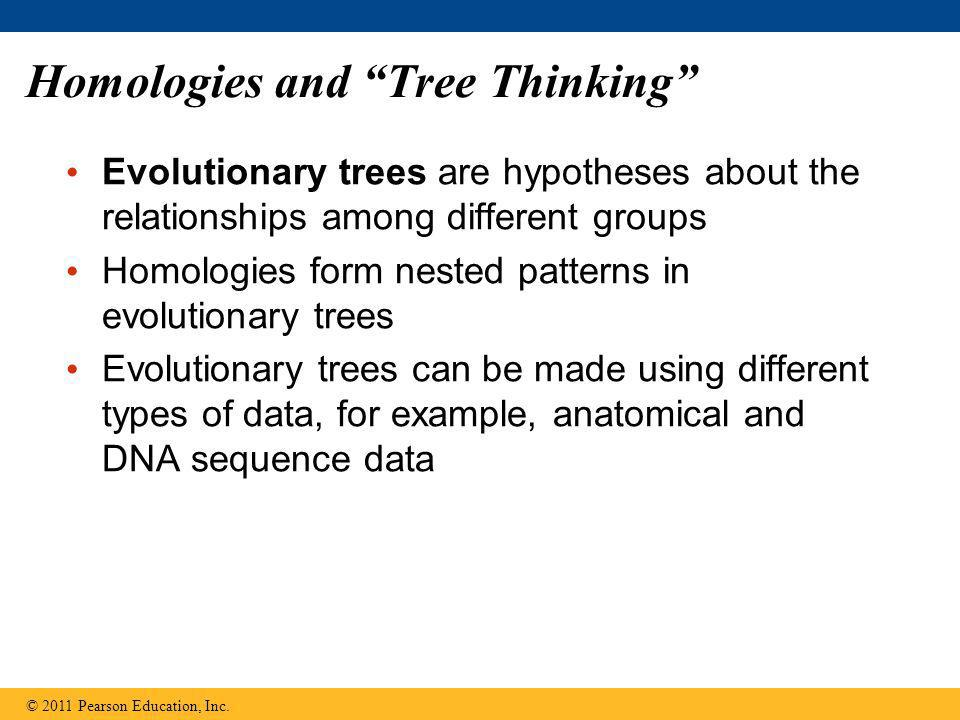 Homologies and Tree Thinking