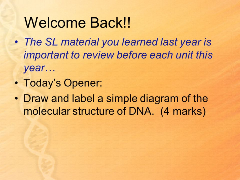 Welcome Back!! The SL material you learned last year is important to review before each unit this year…