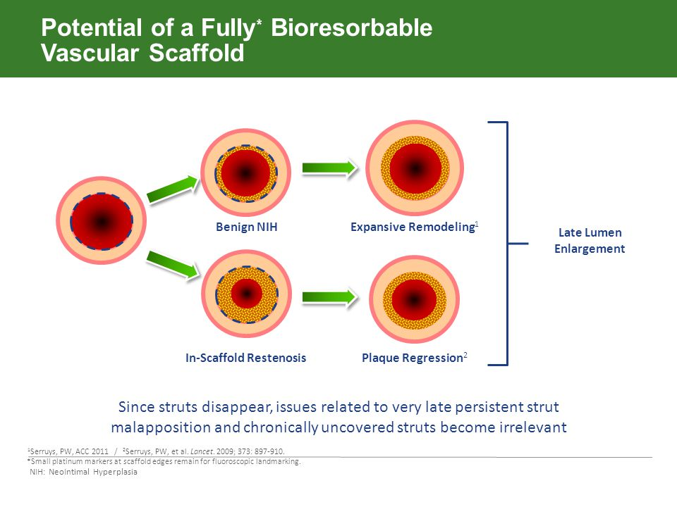 Potential of a Fully* Bioresorbable Vascular Scaffold