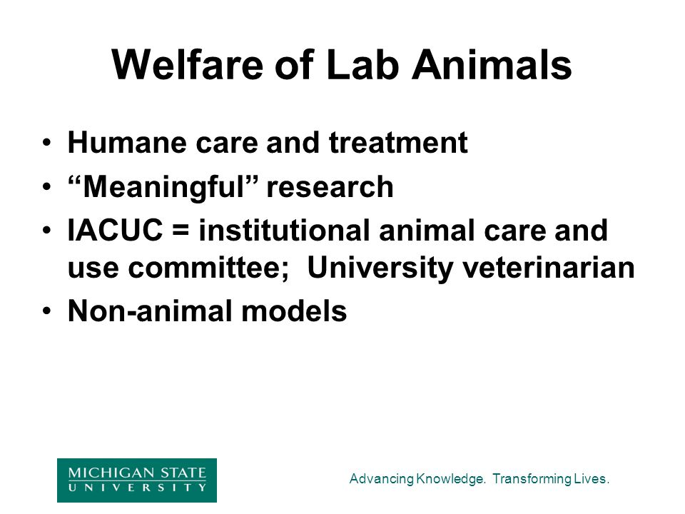 Welfare of Lab Animals Humane care and treatment Meaningful research