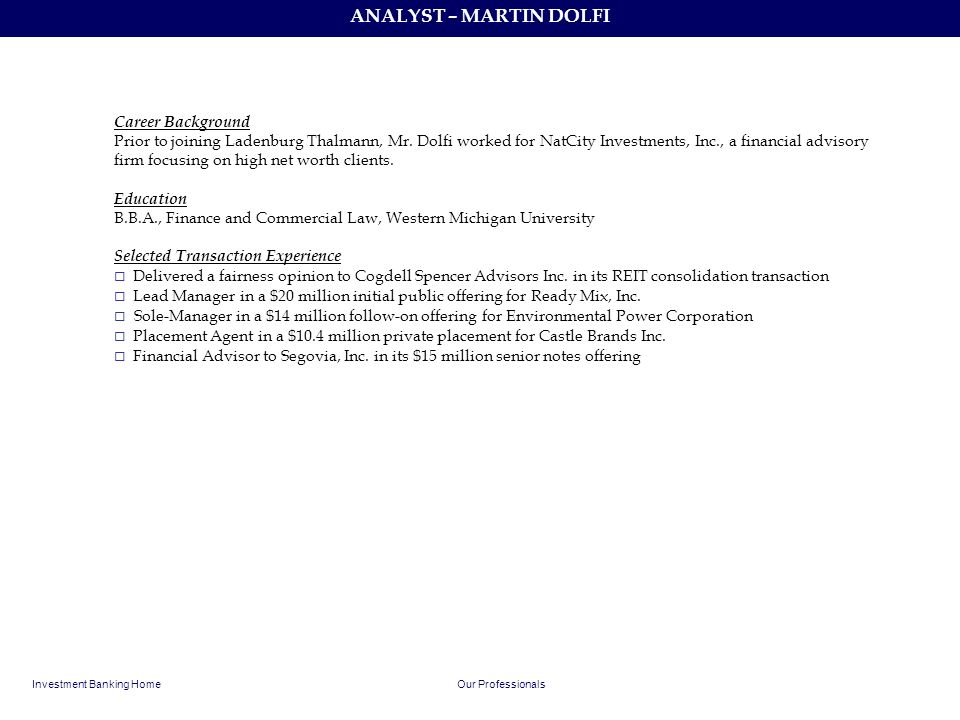 ANALYST – MARTIN DOLFI Career Background