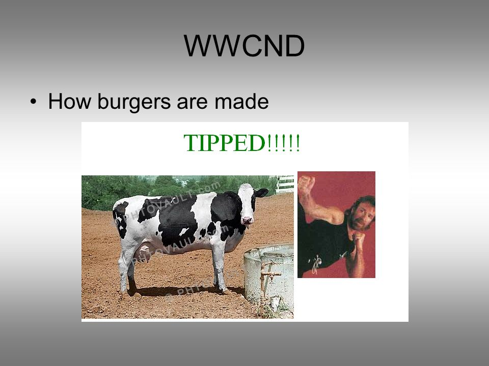 WWCND How burgers are made