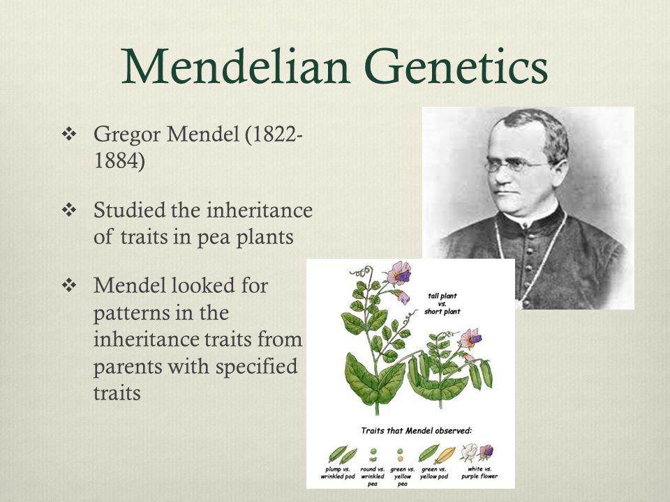 mendelian traits in humans pdf