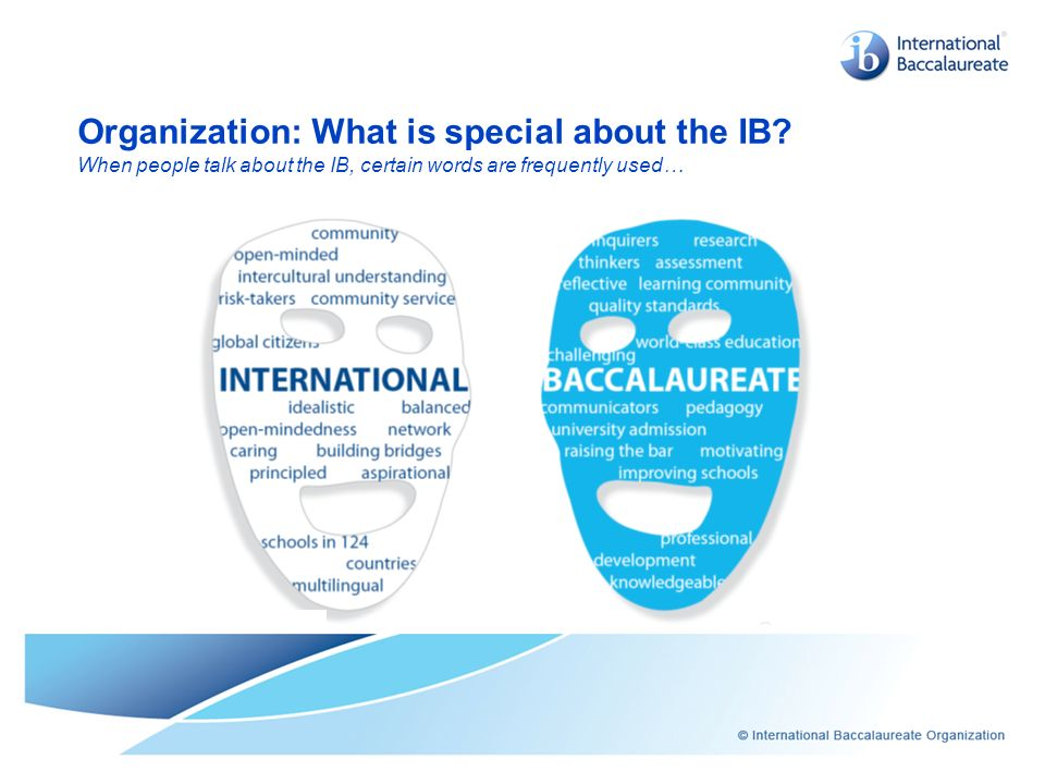 Organization: What is special about the IB
