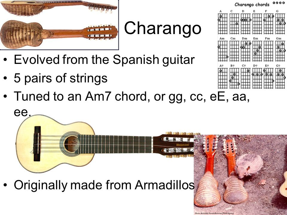 Charango Evolved from the Spanish guitar 5 pairs of strings