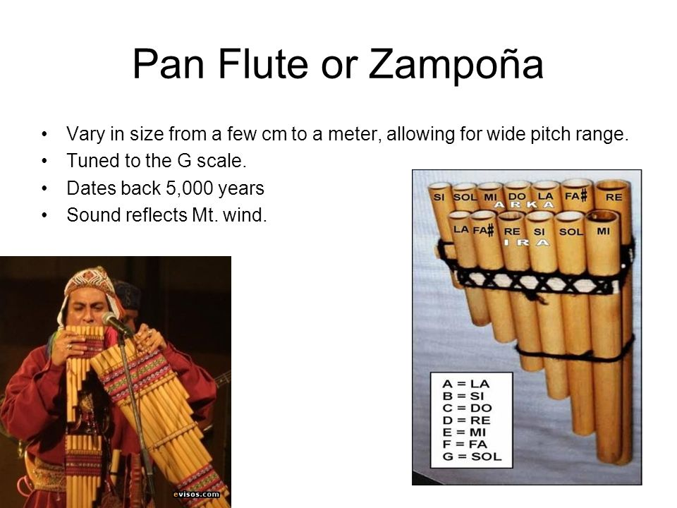 Pan Flute or Zampoña Vary in size from a few cm to a meter, allowing for wide pitch range. Tuned to the G scale.