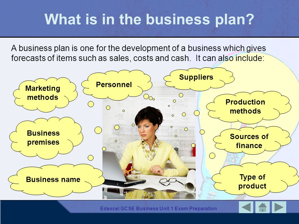 What is in the business plan