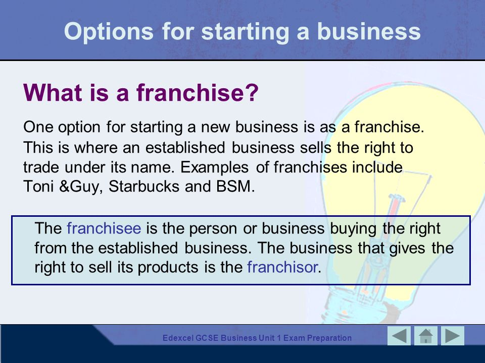 Options for starting a business