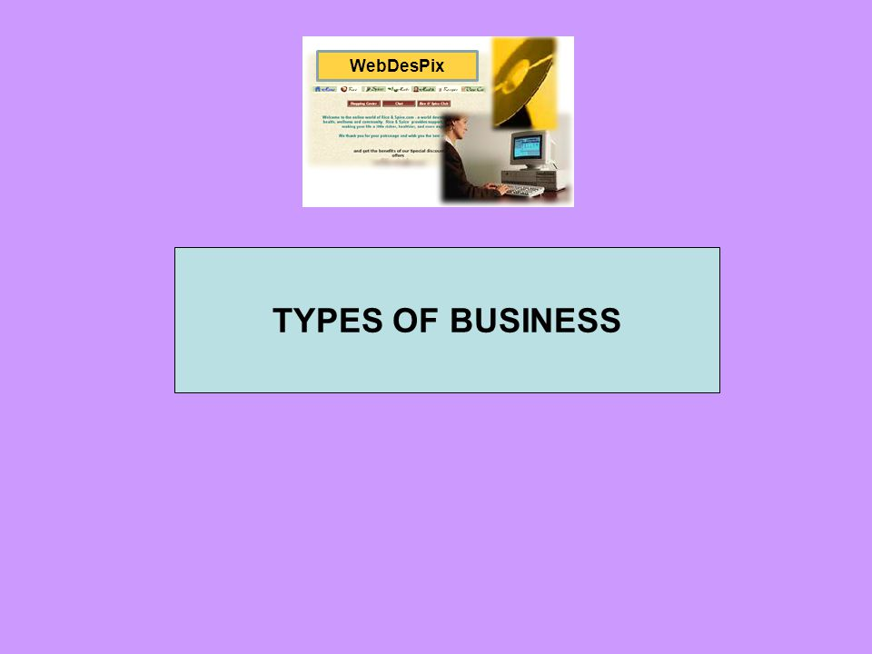WebDesPix TYPES OF BUSINESS