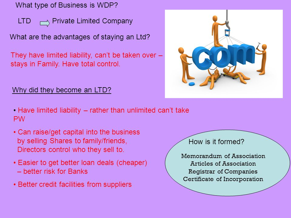 What type of Business is WDP