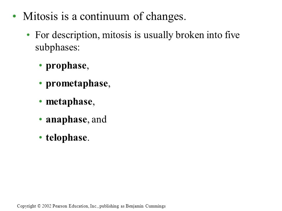 Mitosis is a continuum of changes.