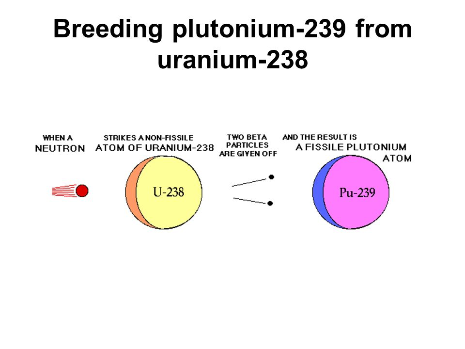 Breeding plutonium-239 from uranium-238