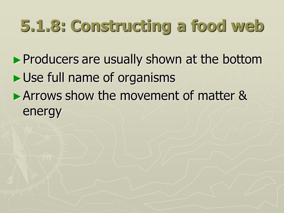 5.1.8: Constructing a food web