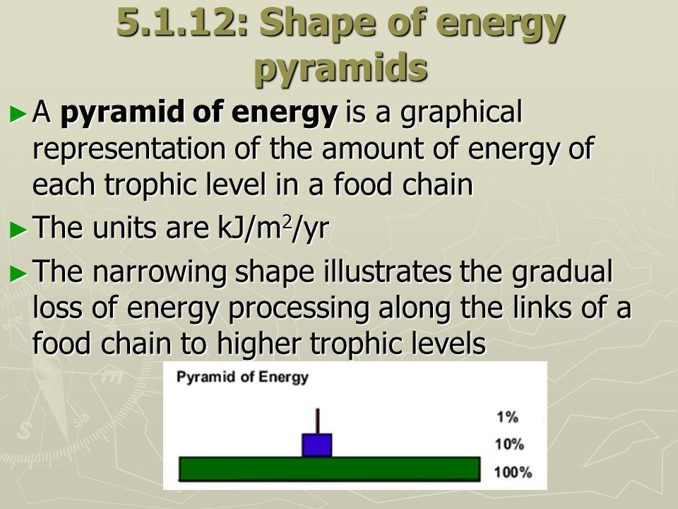 5.1.12: Shape of energy pyramids