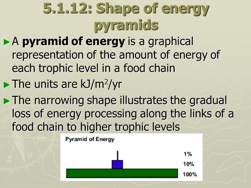 5.1.12: Shape of energy pyramids