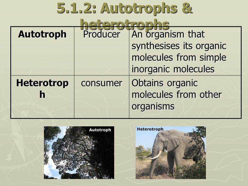 5.1.2: Autotrophs & heterotrophs
