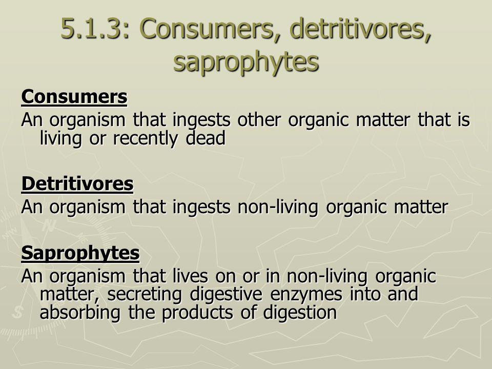 5.1.3: Consumers, detritivores, saprophytes