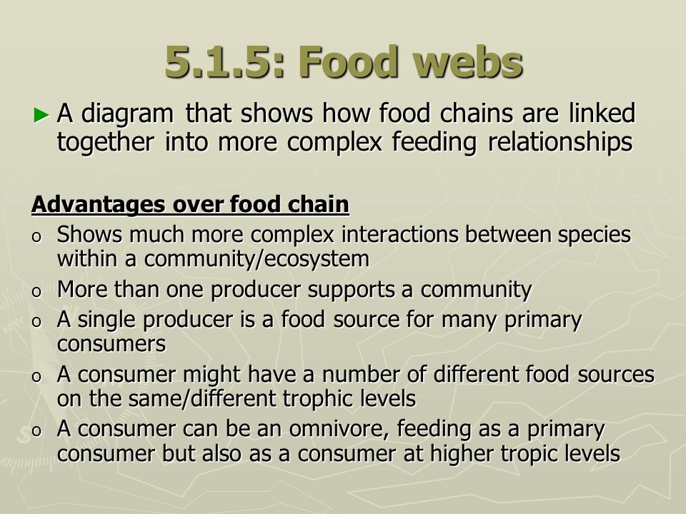 5.1.5: Food webs A diagram that shows how food chains are linked together into more complex feeding relationships.