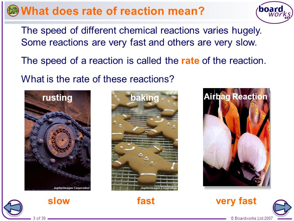What does rate of reaction mean