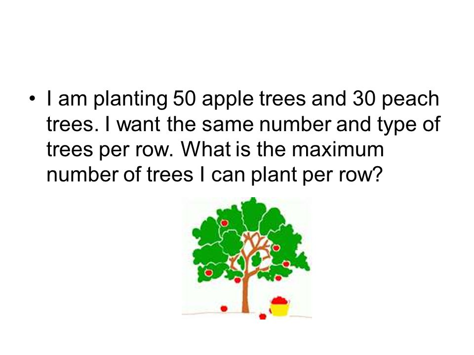 I am planting 50 apple trees and 30 peach trees
