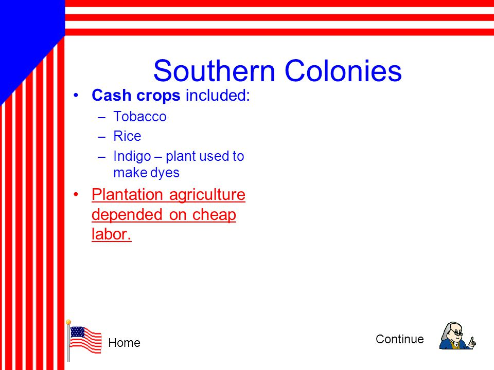 Southern Colonies Cash crops included: