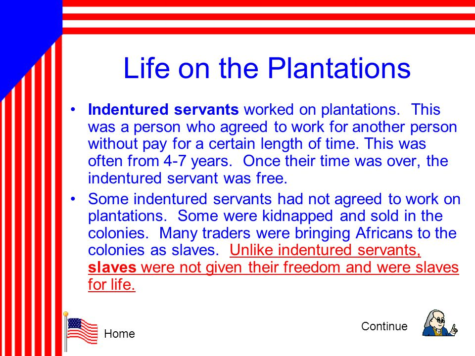 Life on the Plantations
