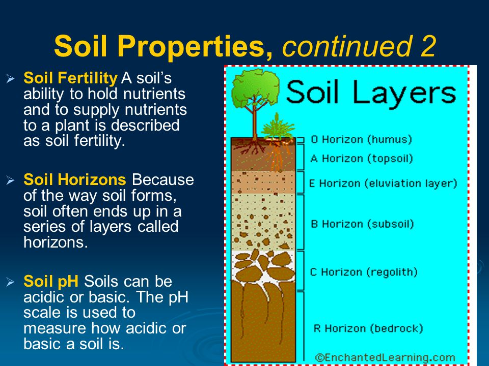 a research on the fertility of the soil in india Soil fertility research institute this idea is somehow achieved by using recent it innovations by the present government of the punjab and by making information.
