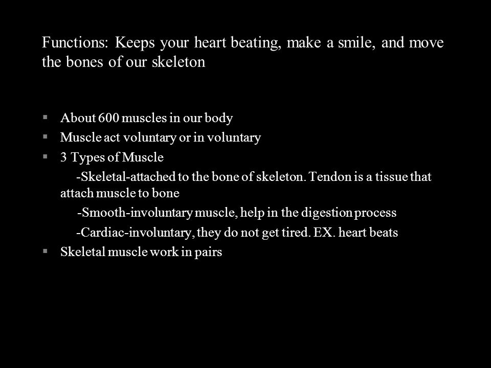Functions: Keeps your heart beating, make a smile, and move the bones of our skeleton