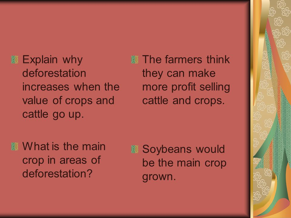Explain why deforestation increases when the value of crops and cattle go up.