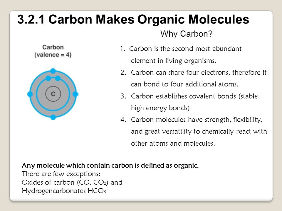 3.2.1 Carbon Makes Organic Molecules