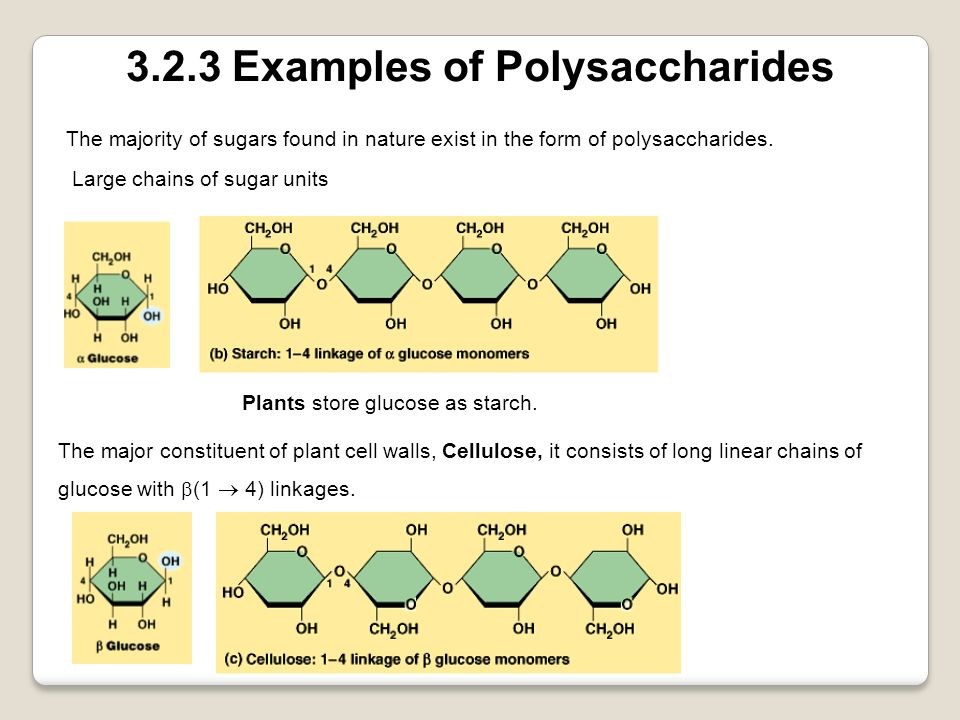 3.2.3 Examples of Polysaccharides