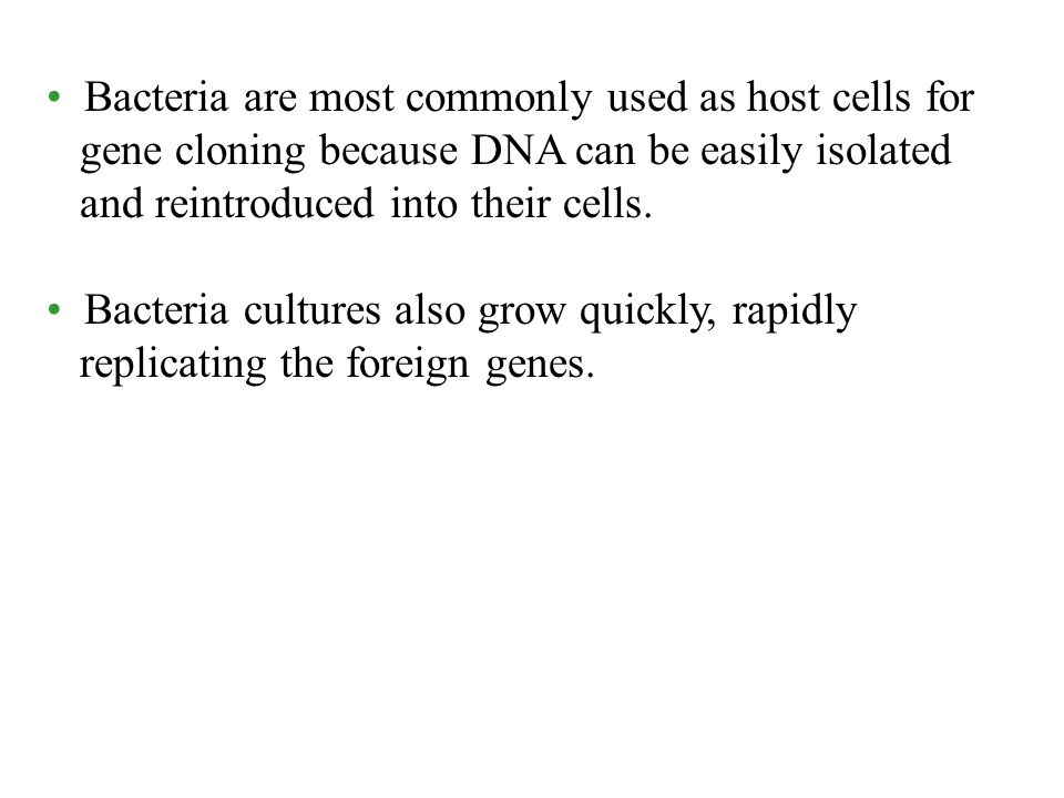 Bacteria are most commonly used as host cells for gene cloning because DNA can be easily isolated and reintroduced into their cells.