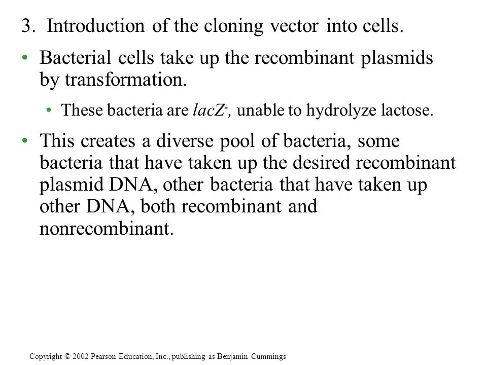 3. Introduction of the cloning vector into cells.