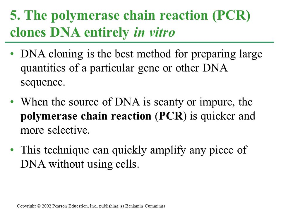 5. The polymerase chain reaction (PCR) clones DNA entirely in vitro