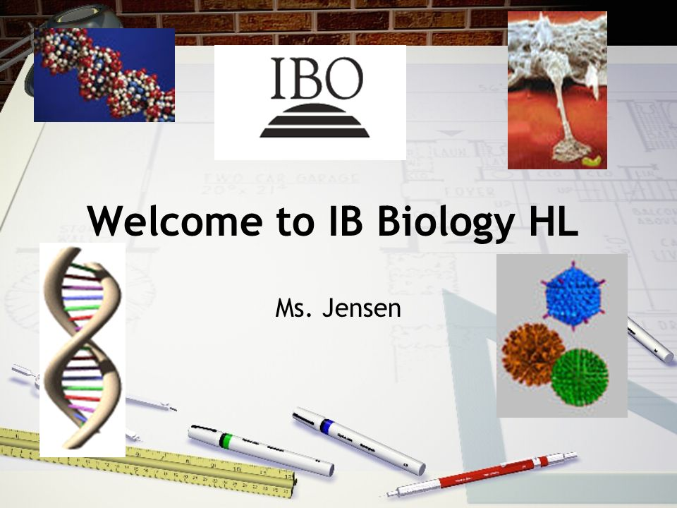 Welcome to IB Biology HL
